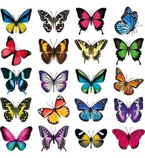 20 Stück Schmetterling Fenster Haftet Anti-Kollision Fenster Aufkleber zum Verhindern der Vogelschläge auf Fensterglas Nicht Klebendes Vinyl Haftende Schmetterling Aufkleber Haften Dekor