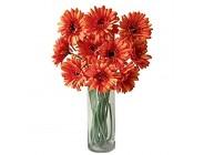 Rae's Garden Künstliche Blumen realistische Kunstblumen Gerbera Gänseblümchen Brautstrauß für Zuhause Garten Hochzeit Party Dekoration 10 Stück Orange