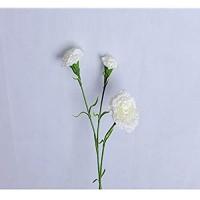 WBXYCG Dekorative künstliche Blume Kunstblume Nelke Seidenblume Home Hochzeitsarrangement Blumenstrauß Dekoration Vase Blumenarrangement (Weiße Farbe , 2Bündel)