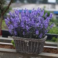 WBXYCG Künstliche Blumen Lavender Seidenimitat Blumenarrangement für Tischdekoration Home Office Hochzeitsdekoration (2 Trauben) 1