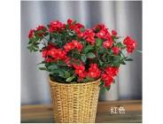WBXYCG Künstliche Blumen Red Bouquet Seidenimitat Blumenarrangement für Tischdekoration Home Office Hochzeitsdekoration (1 Bündel) 2