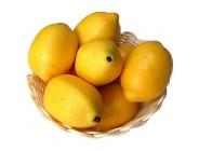 Gresorth 8 Stück Künstliche Lebensechte Gelb Zitrone Deko Gefälschte Früchte Obst Party Festival Dekoration