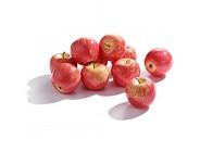 SUREH Künstliche rote Äpfel realistisch lebensecht dekorative Schaum Früchte für Dekoration Basteln Fake Apples Obst Home Party Küche Festival Show 10 Stück Roter Apfel 10 Stück
