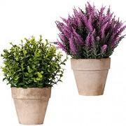 FagusHome Künstliche Pflanzen im Topf 2 Stück Topf Künstliche Eukalyptus Pflanzen Künstliche Lavendelpflanze 10 Zoll Hoch Gras Kunststoff Töpfen für Innendekor A