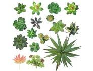 GWHOLE 16 Stück Künstliche Sukkulenten Pflanzen Set Ohne Topf für Haus Büro Balkon