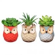 Yardwe 3 STÜCKE Künstliche Sukkulenten Pflanzen/Mini kunststoffpflanzen für Home Bath Büro Regal Dekoration
